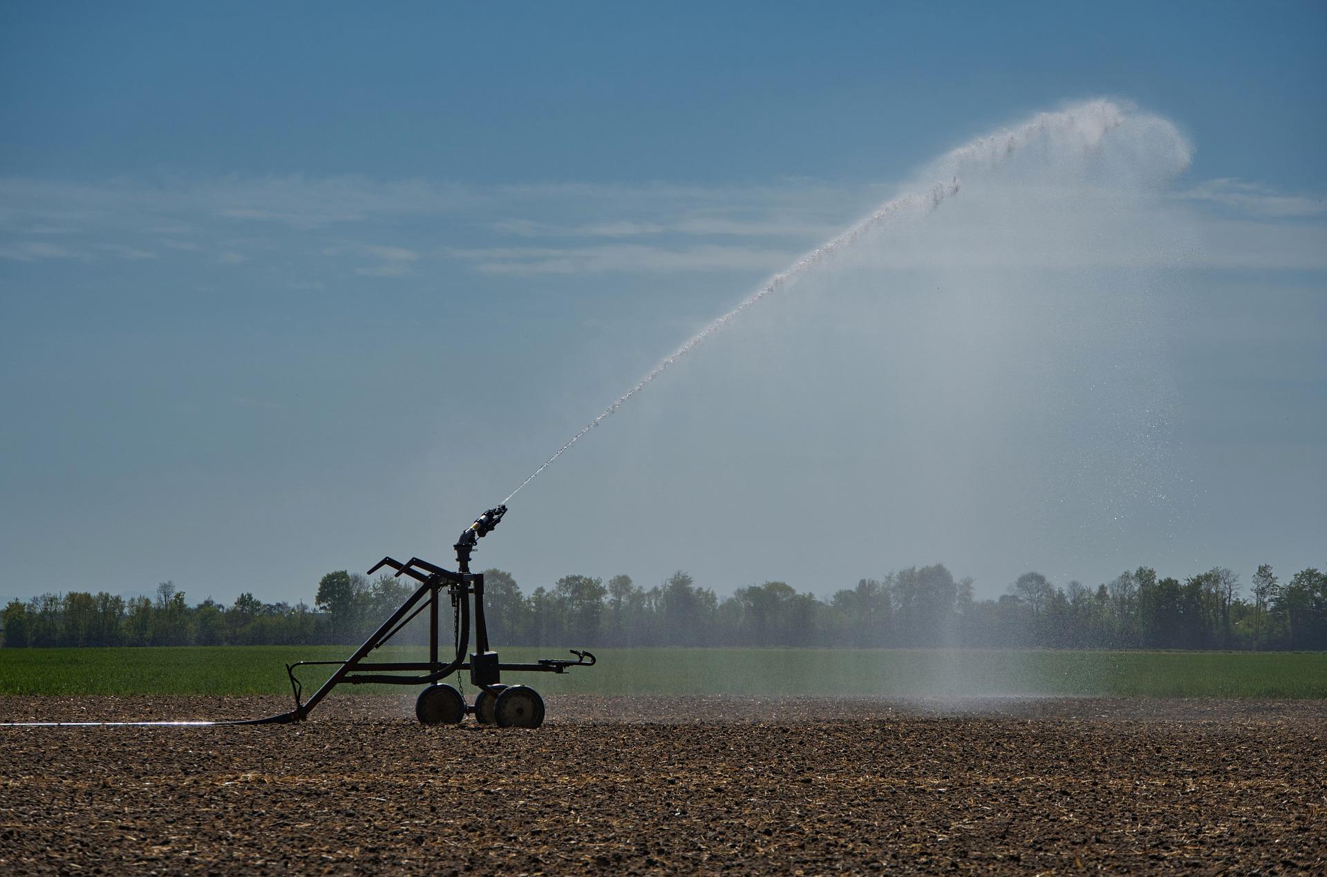 wateropslag en waterverbruik - steeds vaker droogte in Nederland